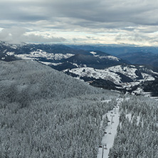 Amazing winter landscape of Rhodope Mountains near Pamporovo resort from Snezhanka tower, Smolyan Region, Bulgaria